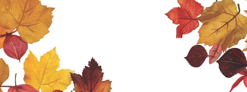 Jane Iredale Fall Landing Page