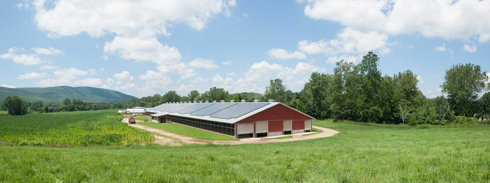 Freund's Farm