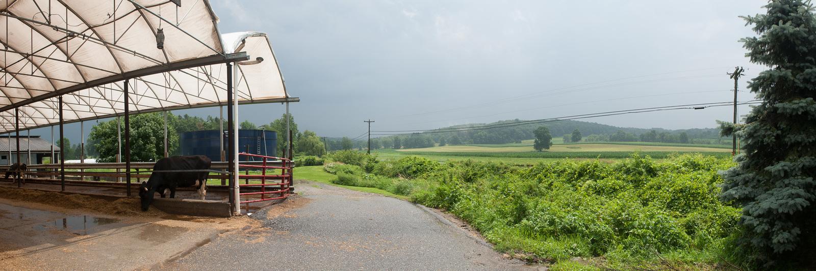 Donovan Dairy at Bos-Haven Farm