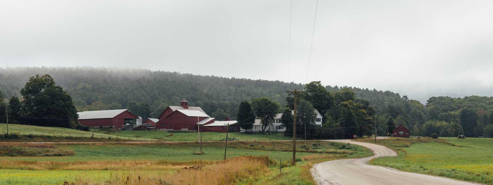 Sanctuary Dairy Farm