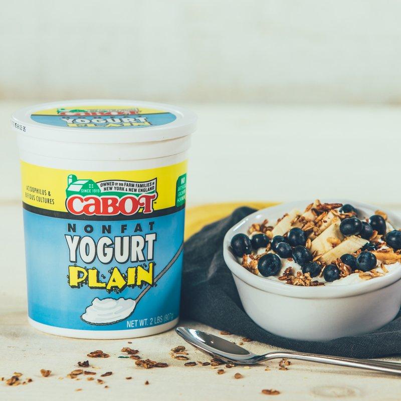 Plain Nonfat Yogurt