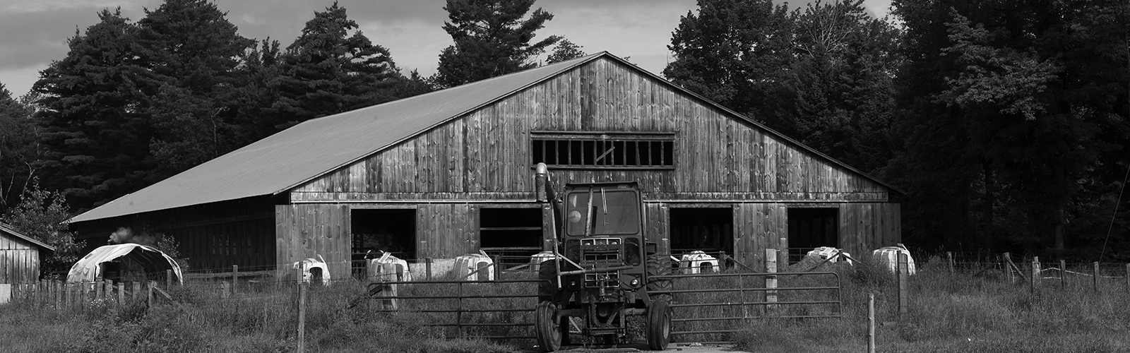 Hook Dairy Farm